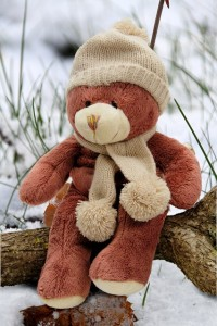 teddy bear with winter clothes like the Teddy Bear Land display